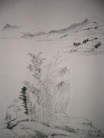 16 -paysage en noir et blanc