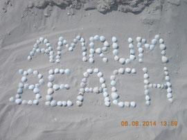 Amrum Beach aus Muscheln