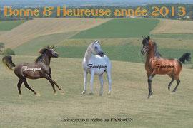 Carte bonne année chevaux arabes