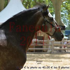 Championnat de FRANCE de PRE-PORTRAITS-09