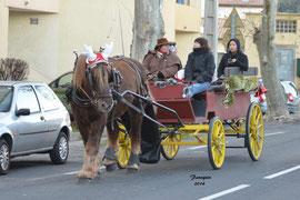 Marchés de Noël 2014 - attelage avec PRUDENCE à Clermont l'Hérault