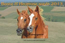 carte bonne année tête chevaux arabes