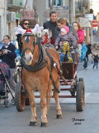 Marchés de Noël 2014 - attelage avec ERIC à Saint André de Sangonis