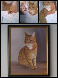 80x100cm, Katzenportrait, Acryl auf Leinwand