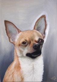 50x70cm, Hundeportrait, Acryl auf Leinwand,