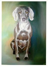 60x90cm, Hundeportrait, Acryl auf Leinwand
