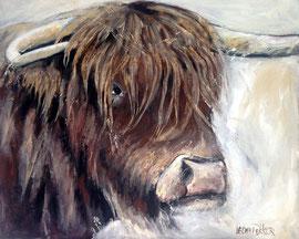 Schotse Hooglander  80x100 acryl verkocht