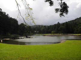 毛越寺庭園(岩手県) Motsuji Garden, Iwate Pref.