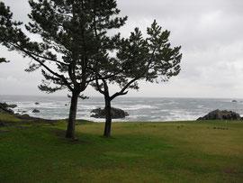 種差海岸(青森県) Tanesashi Coast, Aomori Pref.