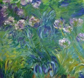 copie d'après Claude Monet - Agapanthes - 1916