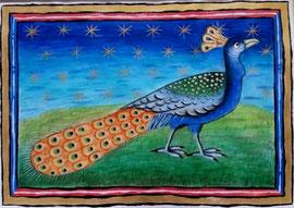 Peacock  (Reproduction of original at Museum Meermanno), 40cm x 27cm