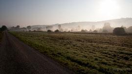 Morgendämmerung bei Malsch