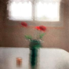 Photographie digital color Nature morte Acceptée salon en Serbie FIAP