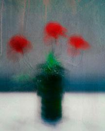 Red Flower Photographie digital color Acceptée ,salon Daguerre Paris 14, salon Riedisheim 2018 Acceptée