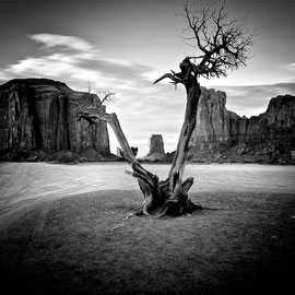 Monumenth Walley Leica M6 argentique