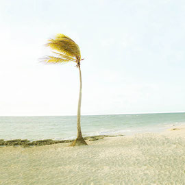 Love in Cuba Digital color
