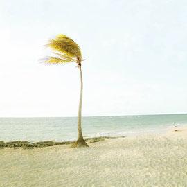 Love in Cuba, Digital color