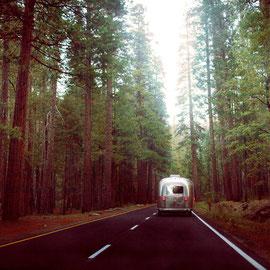 Yosemite park Digital Color