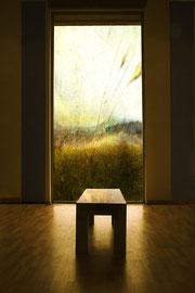 Vers la lumière /Digital color, les Tuileries