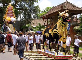 Bali, Payangan: Pelebon cremation ceremony. The bull (lembu), and the 'bade' (rear) in which the body is placed during transport to the cemetery