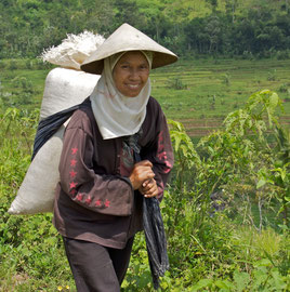Java, Megalang/Windusari area: a Muslim woman carring a sack of rice