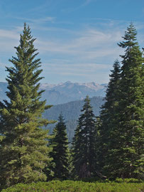 California, Sequoia National Park: Kings Canyon Overlook on Generals Highway