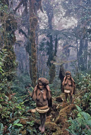 PNG, Star Mountains: two Faiwolmin women entering moss forest at the top of the Hindenburg Wall (approx. 9000 ft)