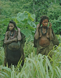 PNG, Nomad River: Biami women warily returning to their longhouse at Waribi