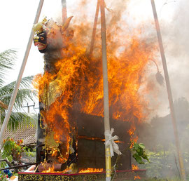 Bali, Payangan: Pelebon ceremony. The bull fully engulfed in flames