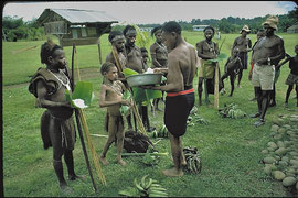 PNG, Nomad River patrol post: a group of Gibusi men from Unawobi longhouse trading green bananas for salt. Sodhu (third from left) will shortly die