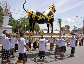 Bali, Payangan: Pelebon cremation ceremony. Carrying the bull (lembu) to the cemetery