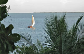 Tanzania, Mafia island: in the late afternoon fishermen in their dhows glided silently past