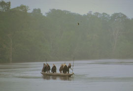 W. Papua, Asmat: women of Basim village with pandanus-leaf raincapes paddle their canoe across the Fajit river