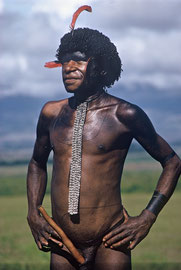 W. Papua, Baliem Valley: portrait of a Dani man
