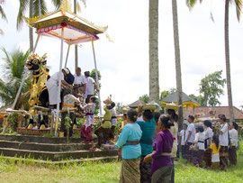 Bali, Payangan: Pelebon ceremony. Female relatives place more offerings atop the corpse, now resting inside the bull