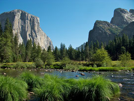 California, Yosemite National Park: view across the Merced river towards El Capitan (left) and Cathedral Rocks (right)