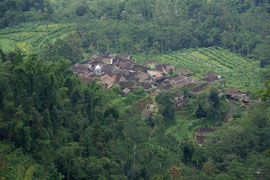 Java: a traditional village in the vicinity of Ropoh