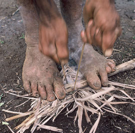 PNG, Southern Highlands: Degondo makes a fire using friction cane and dry grass