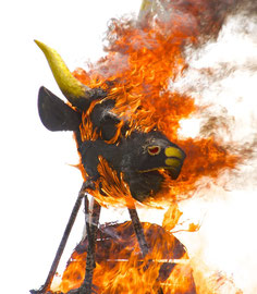 Bali, Payangan: Pelebon ceremony. The bull's head engulfed in flames