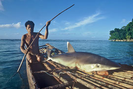PNG, Trobriand Islands: Sabarana, a fisherman of Kapwani skilled in shark magic, returns home with a reef shark