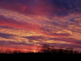 Sunset (December 2008)