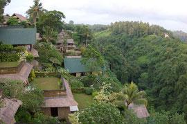 Bali, Ubud: view from the Indus restaurant (Hotel Anhera villas in foreground)