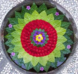 Bali, Ubud: 'Mandala' floral decoration floating on water filled stone basin outside store named Sagitarius