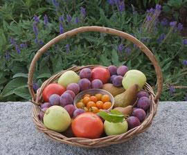 A summer harvest (Sept. 2010)