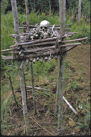 PNG, Nomad River: a collection of bones and skull atop a platform outside Fasubi longhouse
