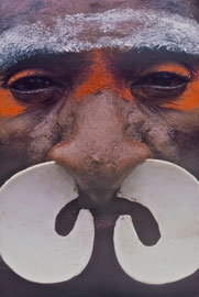 W. Papua, Asmat: a man of Beriten village wearing a bi-pane shell nose ornament