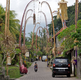 Bali, Ubud: penjor decorations along Penestanan Street