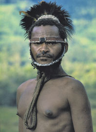 PNG, E. Sepik Province: a man from Wameimin hamlet with horns of rhinoceros beetle in his nostrils