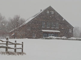 A snow storm (February 2008)