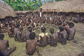 W. Papua, Baliem Valley: village leaders distribute portions of pig to the assembled guests
